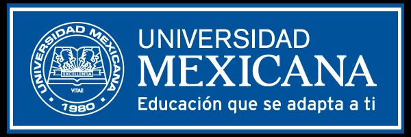 Blog Soy Unimex